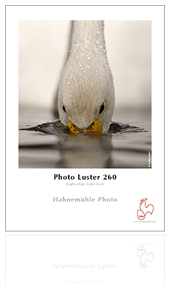 Photo Luster 260gsm